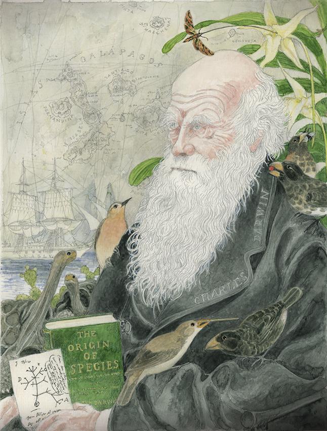 Darwin copia